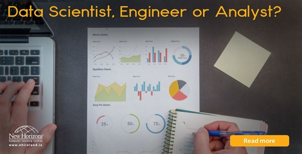 Data Scientist, Data Engineer or Data Analyst