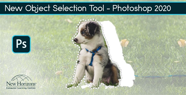 New Object Selection Tool in Photoshop 2020 is a Time Saver